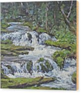 Forest Creek Wood Print