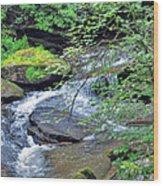 Forest Creek Wood Print