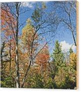 Forest Edge Autumn Pocono Mountains Pennsylvania Wood Print