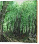 Forest Entrance Wood Print