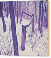 Forest Fence Wood Print