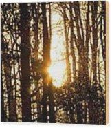 Forest Flurry Lightscape  Wood Print