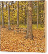 Forest Gold Wood Print