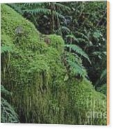 Forest Greenery Wood Print