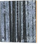 Forest In Winter Wood Print by Bernard Jaubert