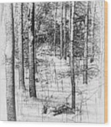 Forest In Winter Wood Print by Tom Mc Nemar