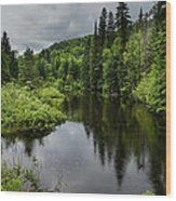 Forest Lake - Quebec - Canada Wood Print