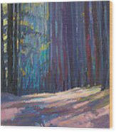Forest Light Wood Print by Ed Chesnovitch