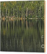 Forest Of Reflection Wood Print
