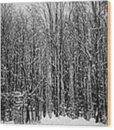 Forest Of Snow Wood Print