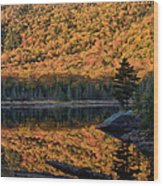 Forest Reflection Wood Print