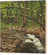 Forest River Wood Print