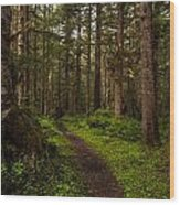 Forest Serenity Path Wood Print