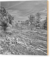 Forest Slope And Sky In Black And White Wood Print