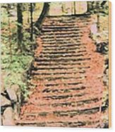 Forest Steps Wood Print