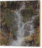 Forest Stream Cascade Wood Print