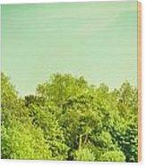 Forest Wood Print by Tom Gowanlock