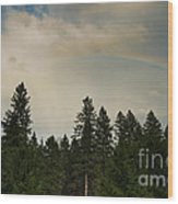 Forest Under The Rainbow Wood Print