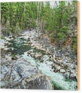 Forest Vein Wood Print