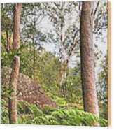 Forest Walk 16 Wood Print