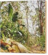 Forest Walk 6 Wood Print
