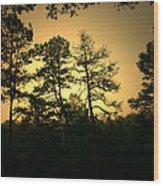 Forest Waltz Wood Print