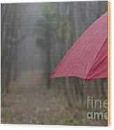 Forest With A Red Umbrella Wood Print
