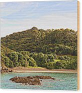 Forested Coast Line Wood Print