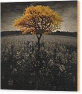 Forever You Wood Print by Brett Pfister