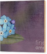 Forget Me Not 02 - S0304bt02b Wood Print