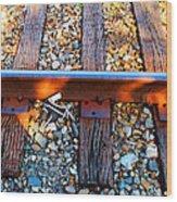 Forgotten - Abandoned Shoe On Railroad Tracks Wood Print