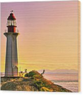 Forgotten Lighthouse Wood Print by Eti Reid