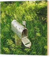Forgotten Mail 0628 Wood Print