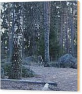 Forgotten Playground Wood Print