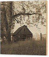 Forgotten Wood Print by Robert J Andler