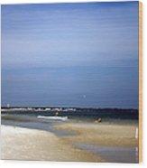 Forida Beach Wood Print