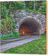 Fork Mountain Tunnel Wood Print