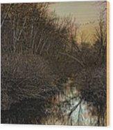 Forlorn Wood Print