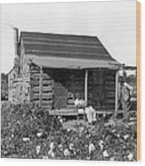 Former Slaves At Their Cabin Wood Print