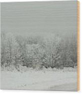 Forrest Of Frost Wood Print
