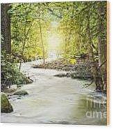 Forrest Stream Wood Print