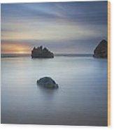 Forresters Beach Sunrise 3 Wood Print by Steve Caldwell