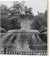 Forsyth Park Fountain - Black And White 2x3 Wood Print