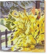 Forsythia In Springtime Wood Print