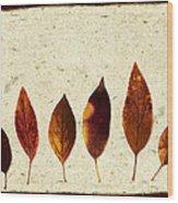Forsythia Leaves In Fall Wood Print