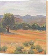 Fort Collins Foothills Wood Print