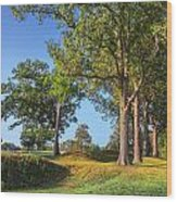 Fort Donelson Wood Print