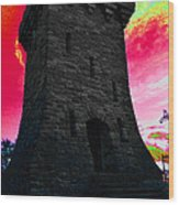 Fort Ethan Allen Abstract Wood Print