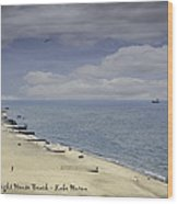 Fort Gratiot Light House Beach Wood Print