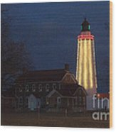 Fort Gratiot Lighthouse And Buildings Wood Print